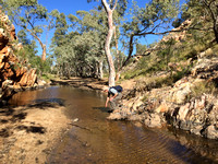 Waterhole near Mulga Camp